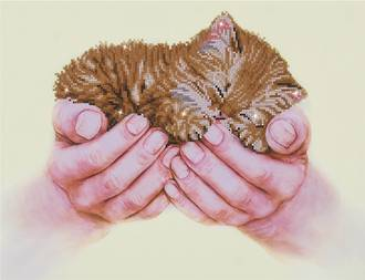 Diamond Dotz - Precious Kitten
