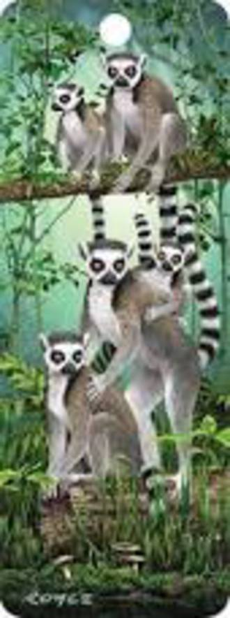 3D Bookmark - Lemurs
