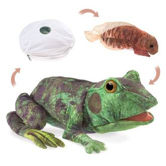 Frog Life Cycle Reversible Puppet - Folkmanis