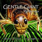 Gentle Giant Wetapunga